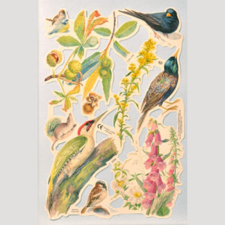 Birds Scrap Sheet 2