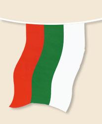 Bulgaria Bunting - small