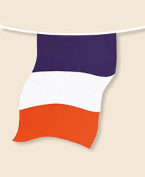 France Bunting - large