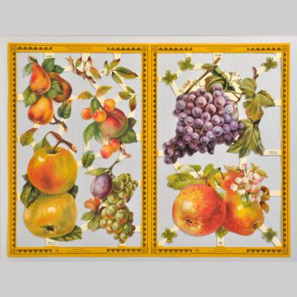 Fruit Golden Scrap Sheet