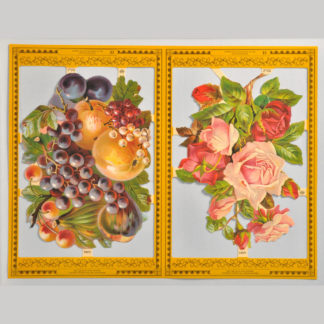 Fruit and Flowers Golden Scrap Sheet