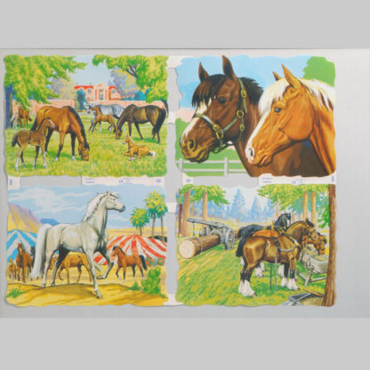 Horses Scrap Sheet 3