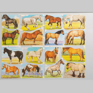 Horses Scrap Sheet 4