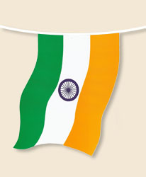 India Bunting - small