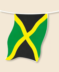 Jamaica Bunting - small