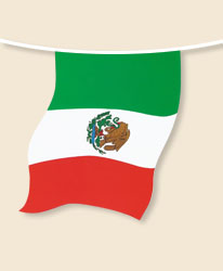 Mexico Bunting - small
