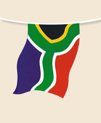 South Africa Bunting - small