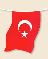 Turkey Bunting - small
