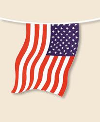 USA Bunting - small
